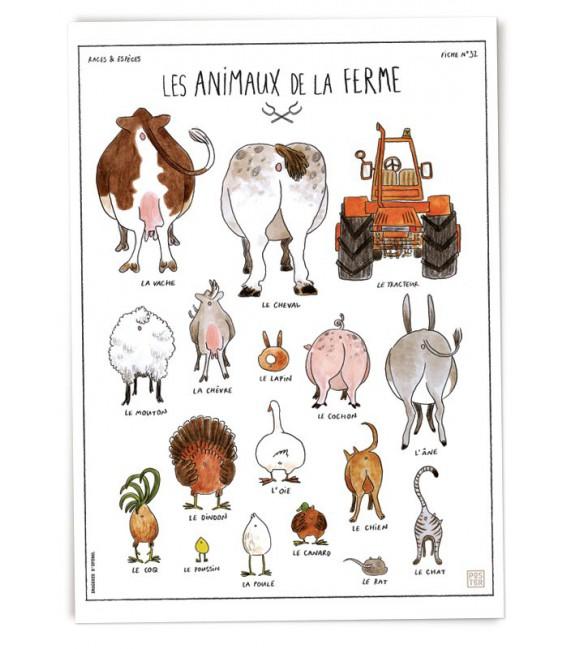 """Affiche """"Les animaux de la ferme"""" par Zoé Thouron"""