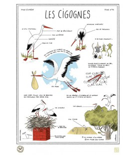 """Grande affiche """"Cigognes"""""""