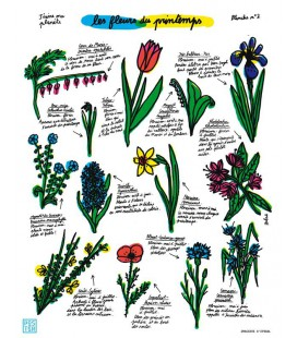 "Affiche ""Les fleurs du Printemps"" par Hubert Poirot-Bourdain"