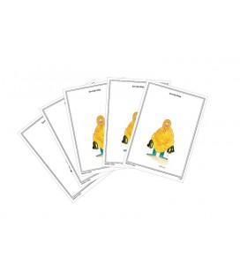"Lot de 5 cartes postales ""Sauvetage"" collection IN VINO VERITAS"