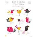 """Affiche """"Les drôles d'oiseaux"""""""