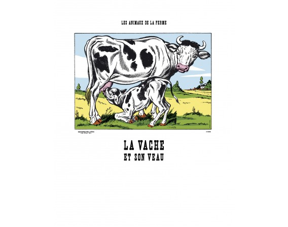 Image La Vache et son veau - Animaux de la Ferme