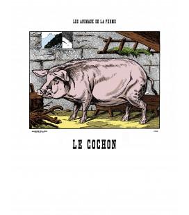 """Image """"Le cochon"""""""