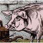 Image Le Cochon - Animaux de la Ferme