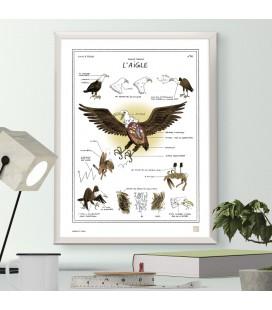 """Grande affiche """"L'aigle"""""""