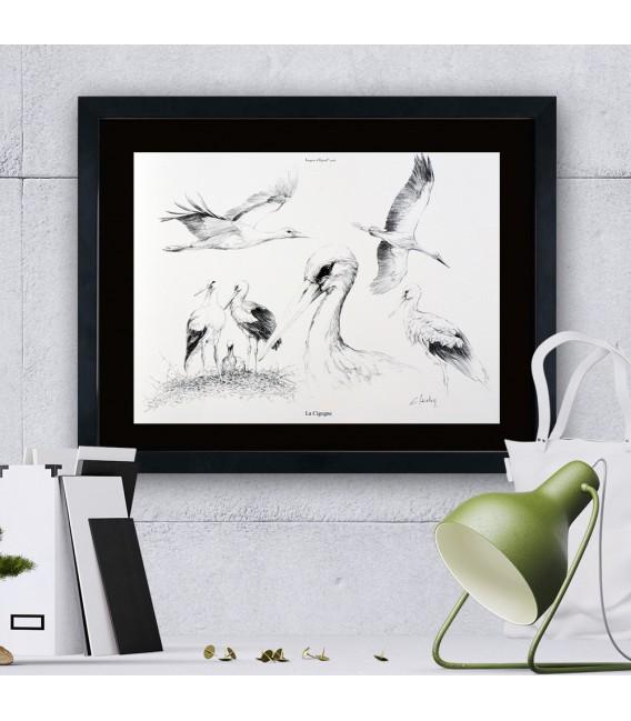 """Image """"La cigogne"""" - collection Les animaux de notre région"""