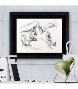 """Image """"L'écureuil"""" - collection Les animaux de notre région"""
