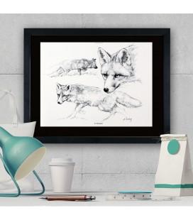 """Image """"Le renard """" - collection Les animaux de notre région"""