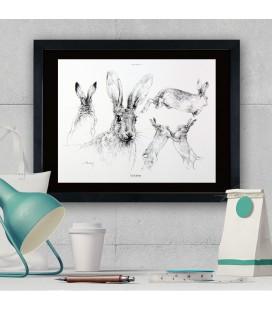 """Image """"Le lièvre """" - collection Les animaux de notre région"""
