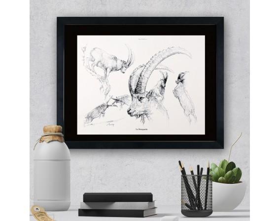 """Image """"Le bouquetin """" - collection Les animaux de notre région"""