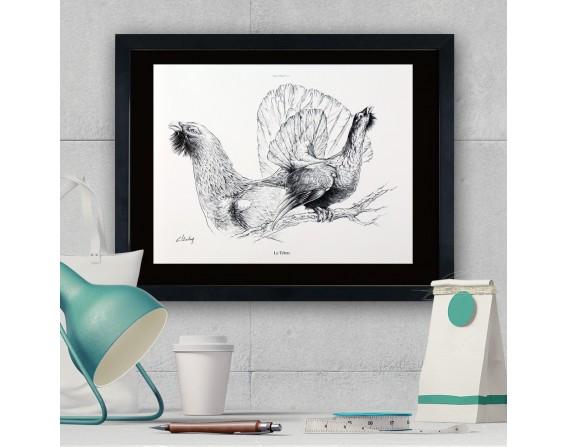 """Image """"Le tétras """" - collection Les animaux de notre région"""