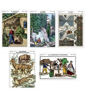 "Lot de 5 cartes postales - collection ""Le massif des Vosges"""