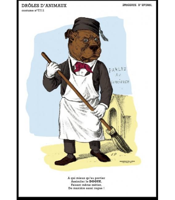 "Carte postale "" Dogue"" - collection drôles d'animaux"