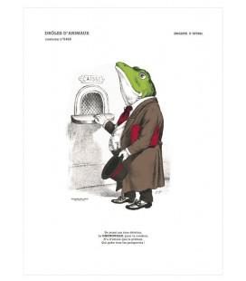 """Image """"La grenouille"""" - collection Drôles d'animaux"""