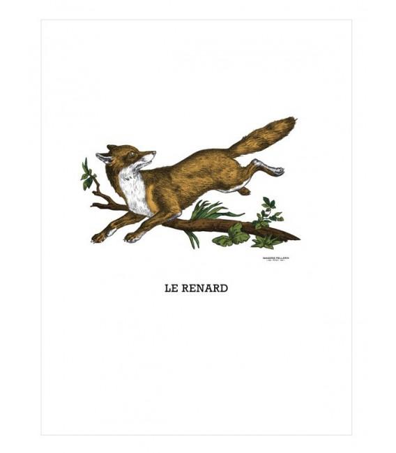 """Image """"Le renard"""""""