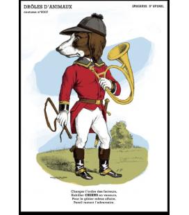 """Carte postale """" chien"""" - collection Drôles d'animaux"""