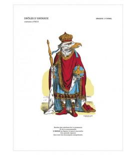 """Image """"L'aigle"""" - collection Drôles d'animaux"""
