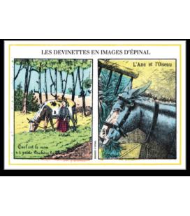 "Carte postale ""Devinettes"" jaune"