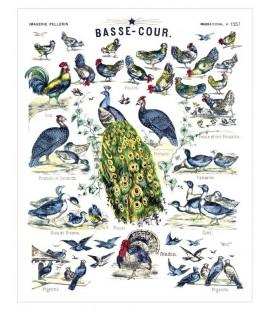 """Affiche """"Basse-cour"""""""