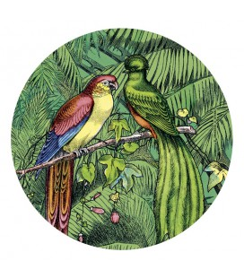 """Miroir de poche """"Oiseaux étrangers"""""""