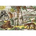 Adam et Eve - décor panoramique