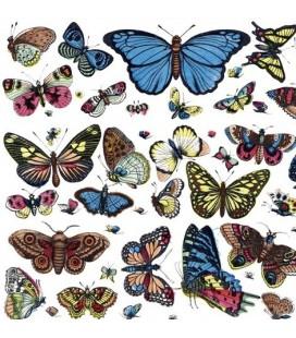 """Affiche """"Papillons"""""""