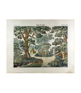 Fond de forêt n°1582