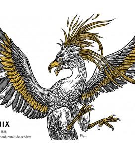 """Image """"Le phenix"""""""