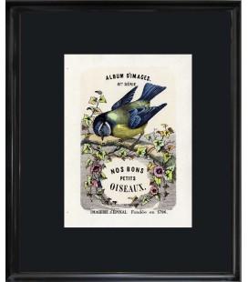 """Image """"Edition originale 1879"""" - Nos bons petits oiseaux"""