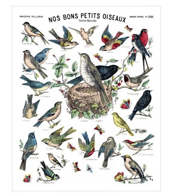 """Affiche """"Nos bons petits oiseaux"""""""