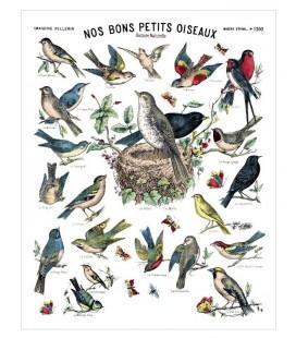 """Tirage d'art """"Nos bons petits oiseaux"""""""