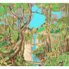 rain forest - décor panoramique