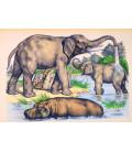 décor panoramique éléphants au bain
