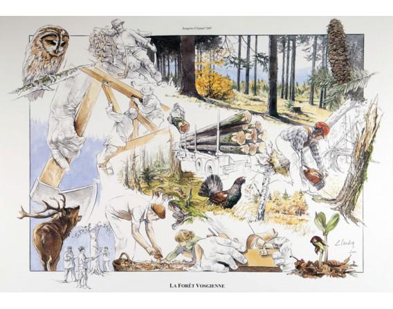 La Forêt Vosgienne / BONNES AFFAIRES
