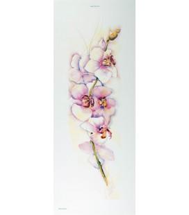 L'Orchidée / BONNES AFFAIRES