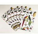 """Lot de 10 cartes doubles """"Les oiseaux"""""""