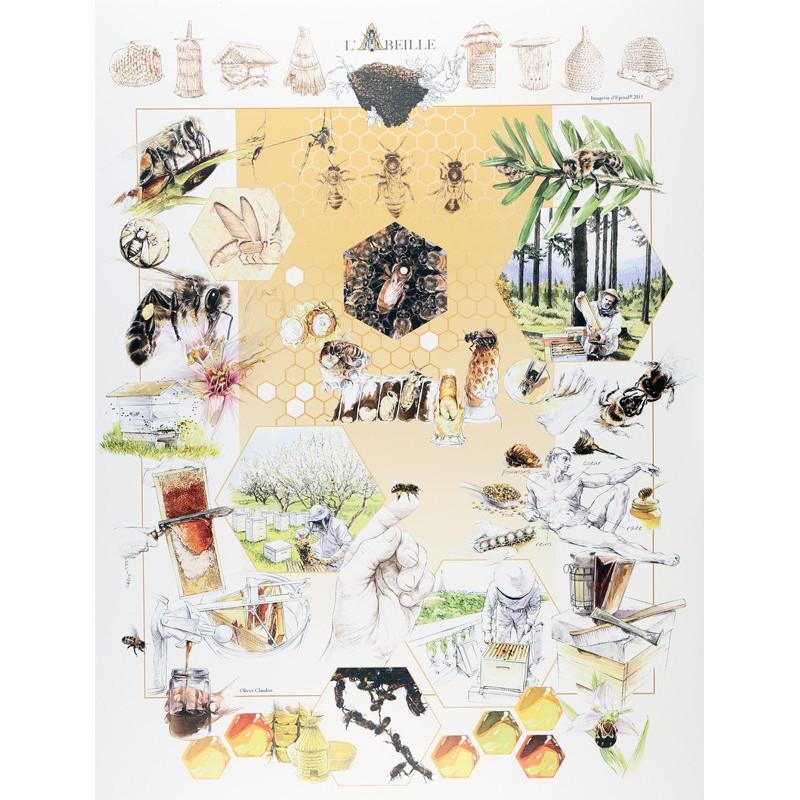 l 39 abeille bonnes affaires maison images d 39 pinal. Black Bedroom Furniture Sets. Home Design Ideas